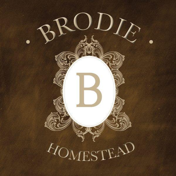 brodie_blog_graphics