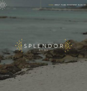 Custom Videographer Website Design | Doodle Dog