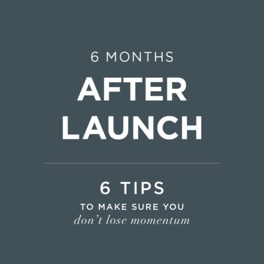 6 Months After Launch | Doodle Dog brand tips