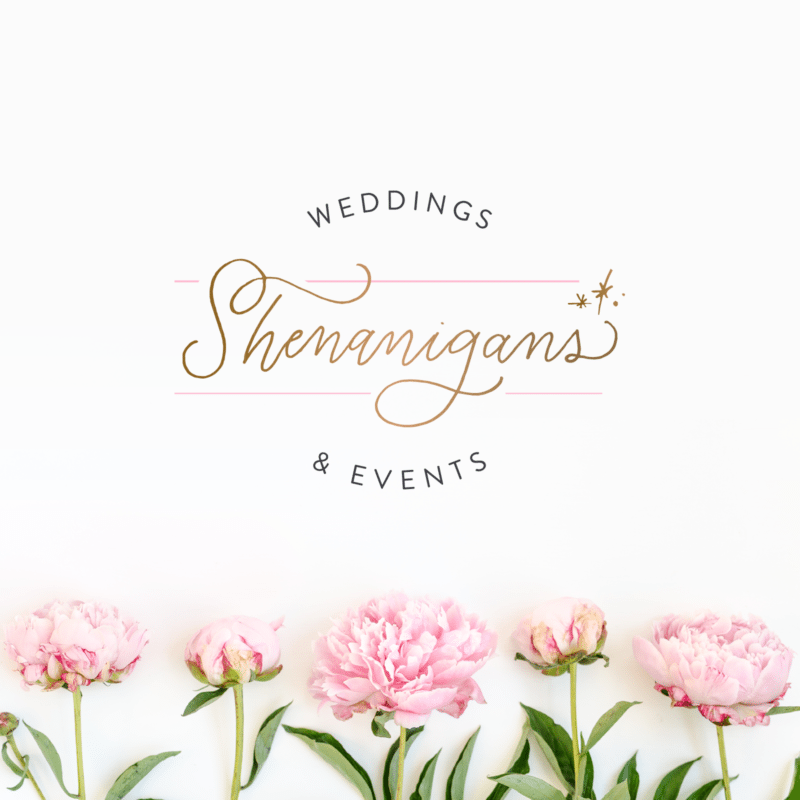 Brand Design and Web Design for Shenanigans Weddings + Events | Doodle Dog