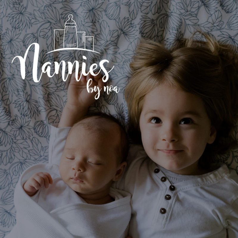 Branding and Web Design for Nannies by Noa   Doodle Dog Creative